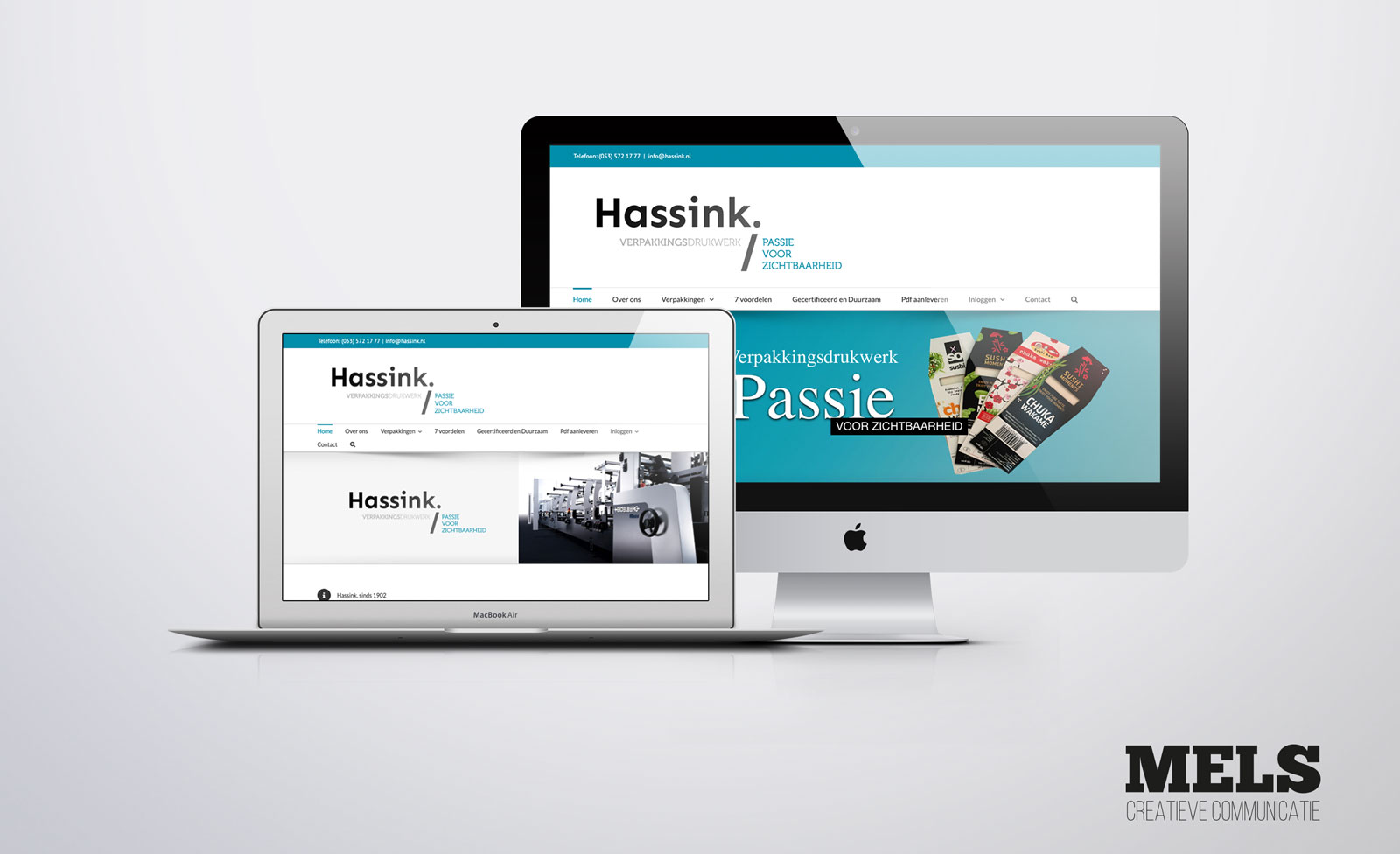 Hassink_website